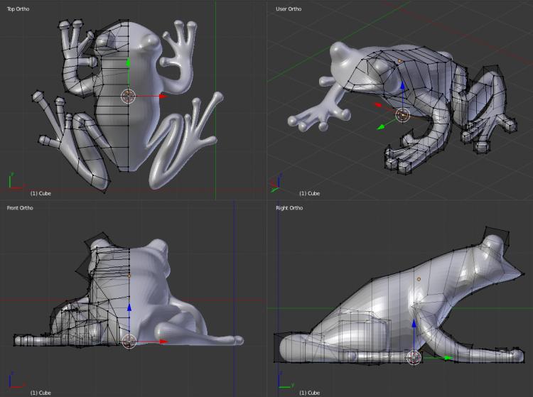 the frog was modeled in Blender