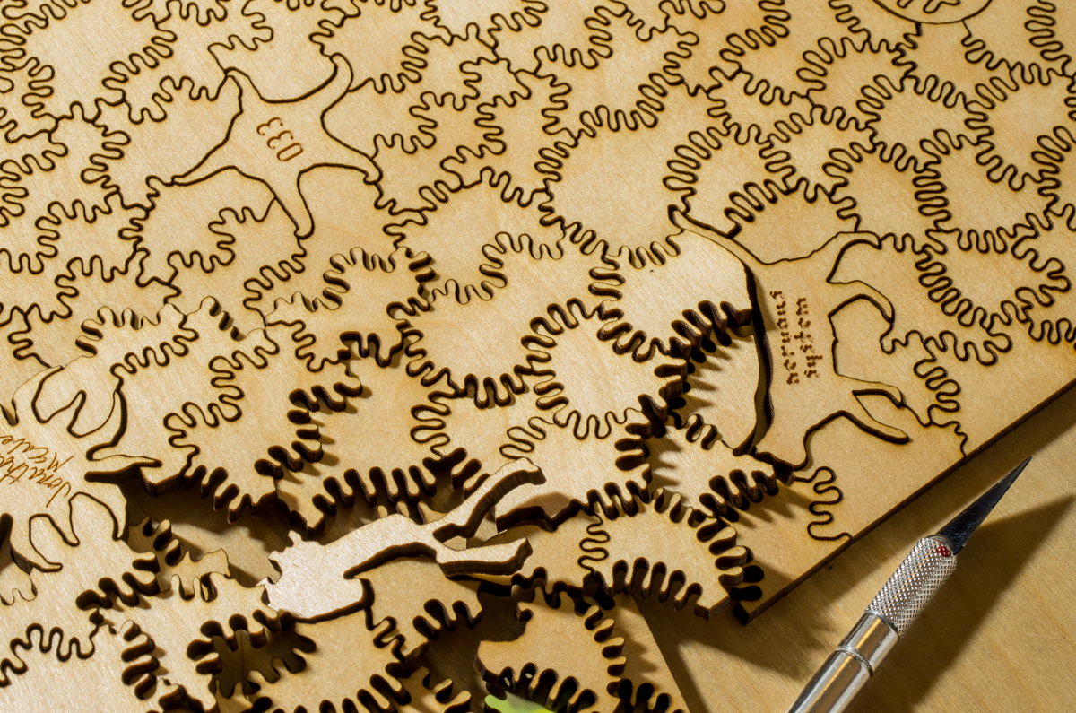 Nervous System's quest for the best laser-cutting plywood