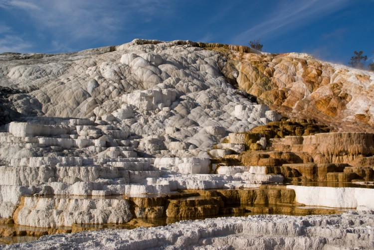 the giant travertine terraces of Mammoth Hot Springs in Yellowstone National Park
