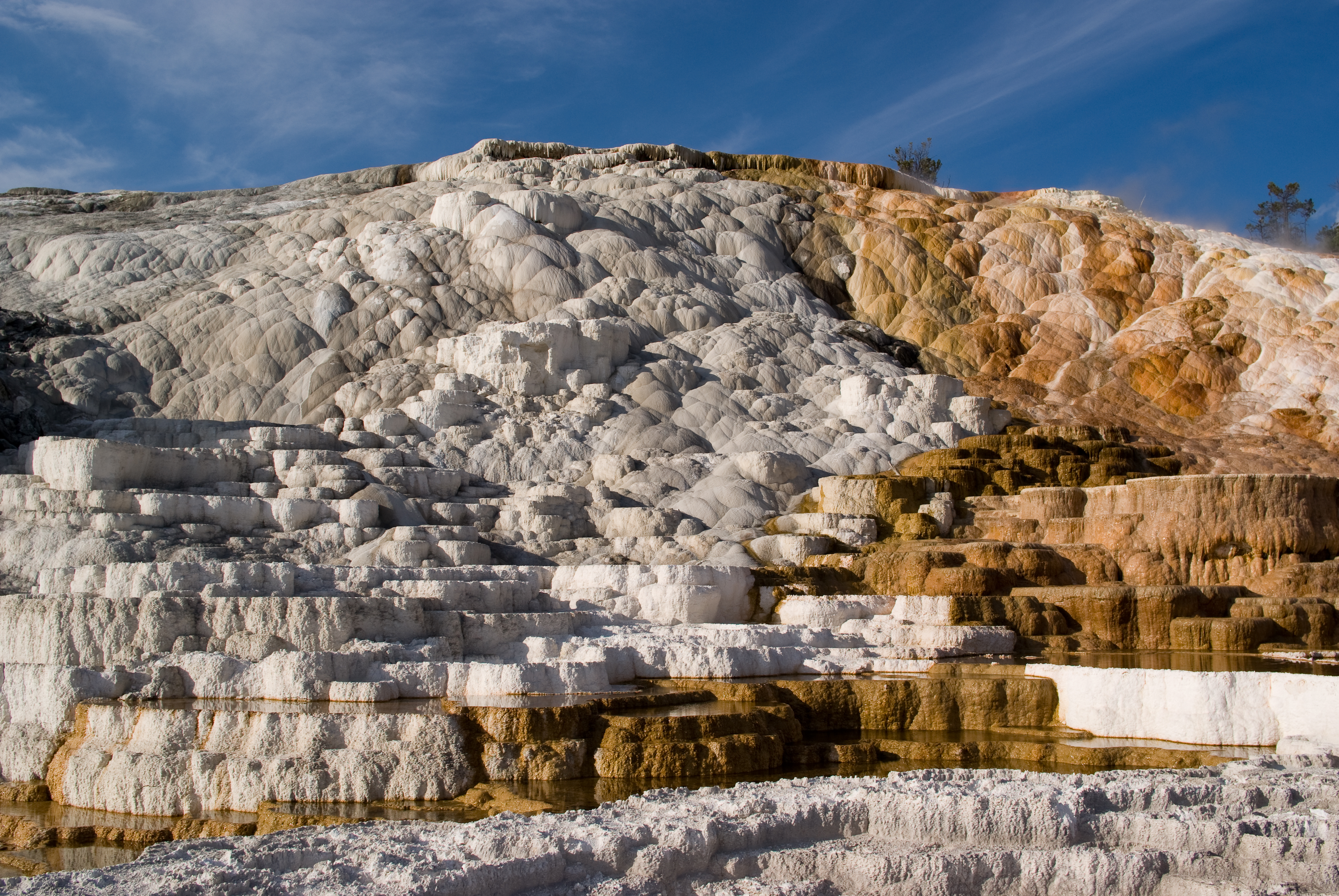 A curious case of ice terraces nervous system blog for What are terraces
