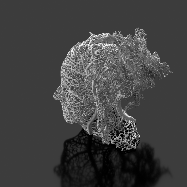 hyphae experiments: growing on the body
