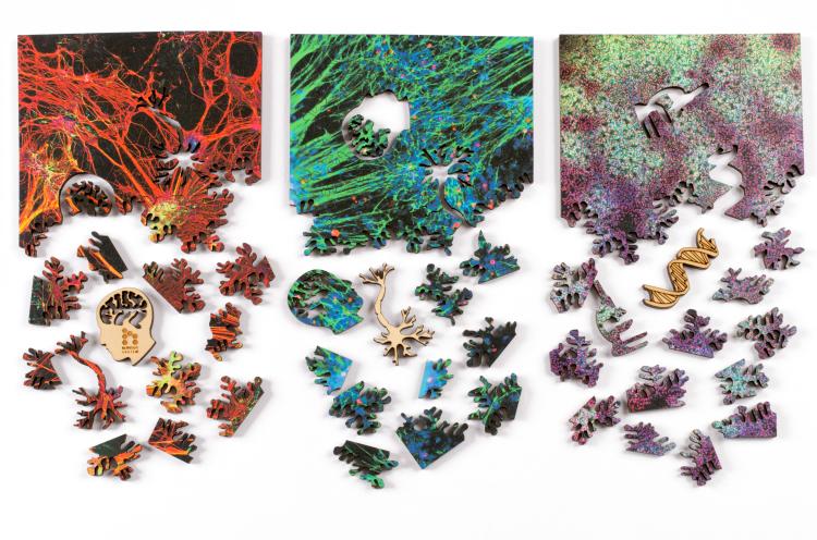 """three 5x5"""" jigsaw puzzles"""