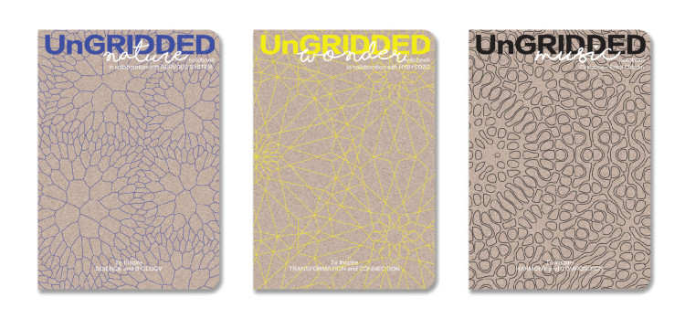 08_UnGRIDDED_Notebook_Series2