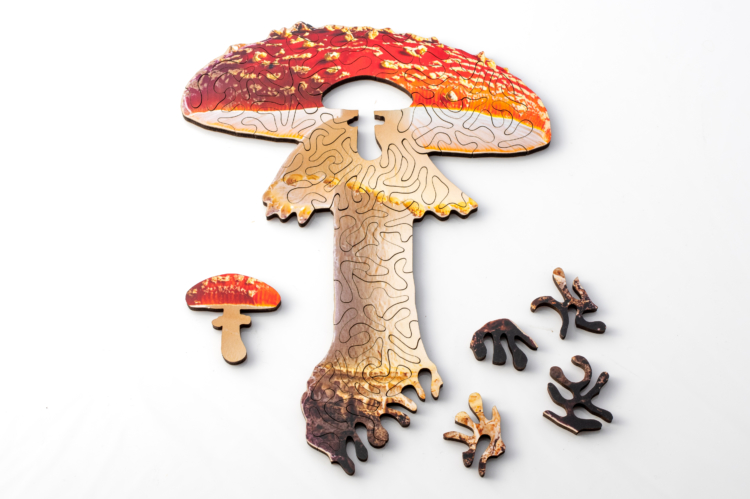 mini mushroom puzzle by nervous system