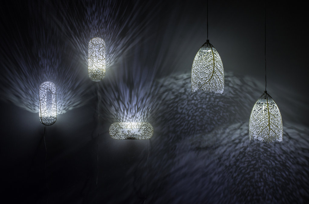 Hyphae sconces and pendant lamps