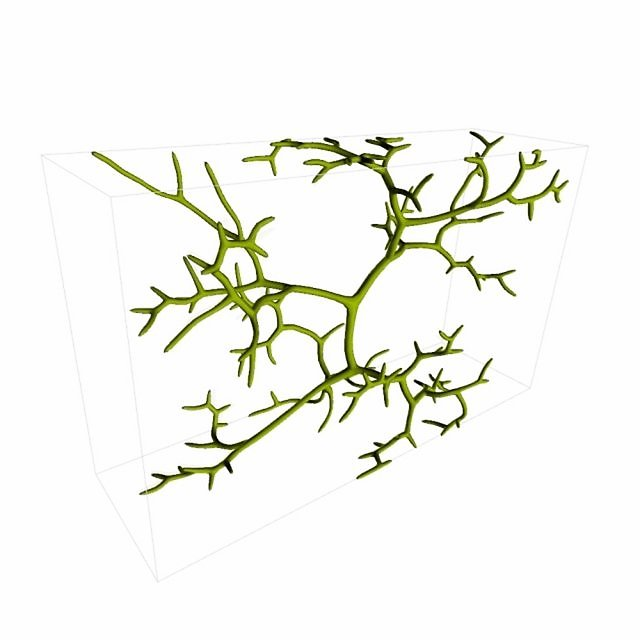 Algae algorithm + videos