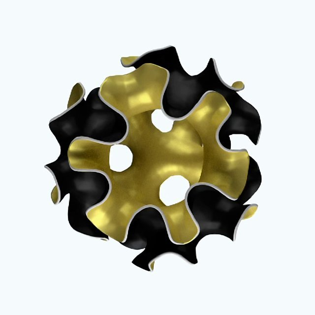 morphogenesis of a sphere with four holes