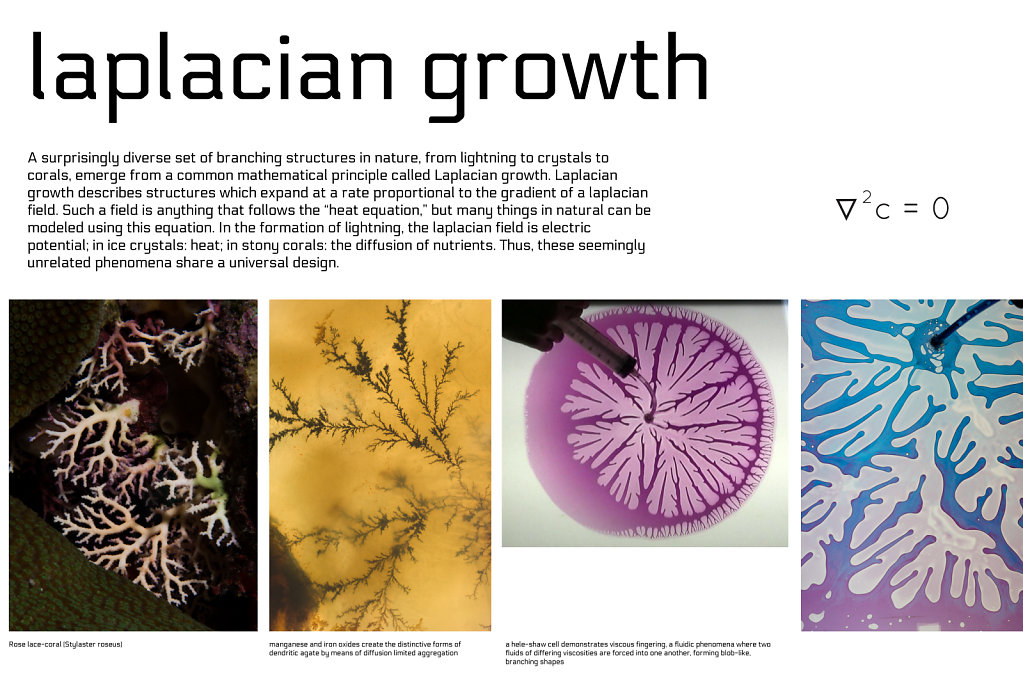 poster: laplacian growth 1