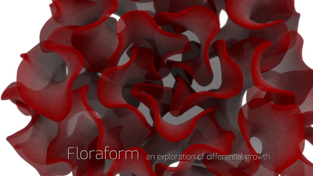 video: Floraform project