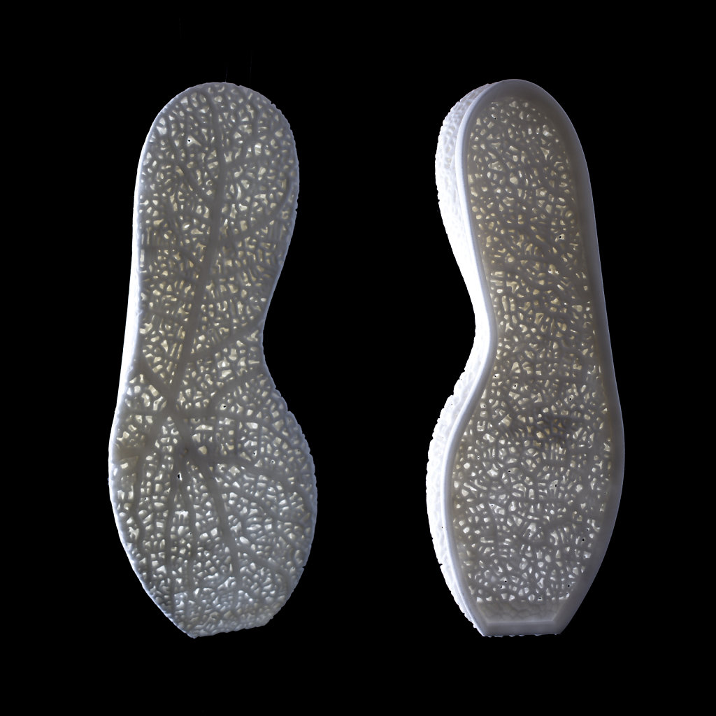 Hyphae midsole concept
